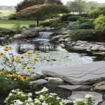 Водный элемент ландшафтного дизайна